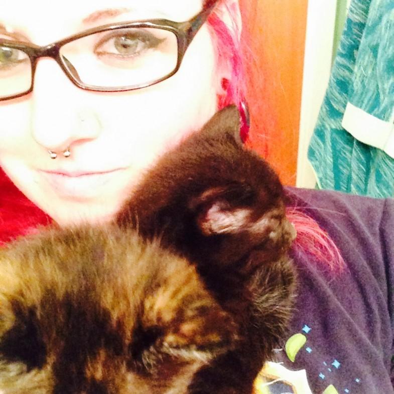 holding kittens
