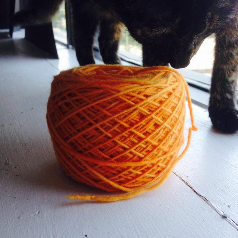 Cyntaf Yarn