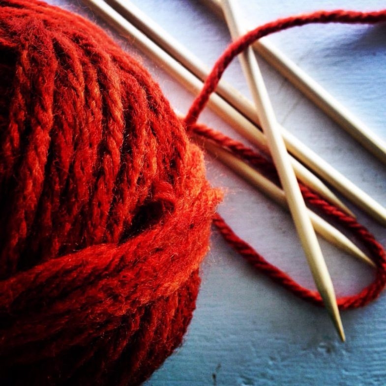 warm in the wild: yarn